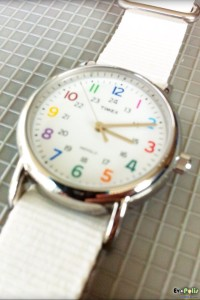 Timex Weekender Slip Thru - T2N837-12