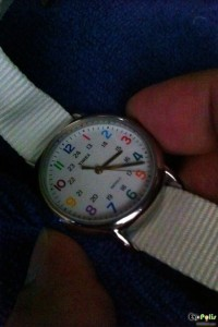 Timex Weekender Slip Thru - T2N837-16