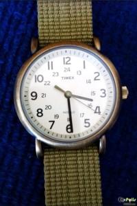 Timex Weekender Slip Thru - T2N894-14