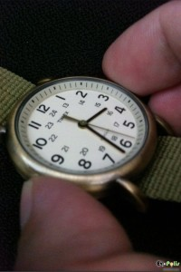 Timex Weekender Slip Thru - T2N894-20